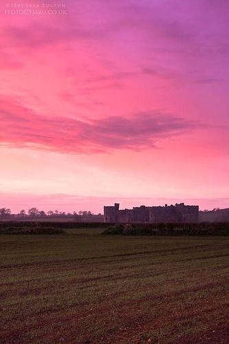 Pink  Carew Castle, Wales