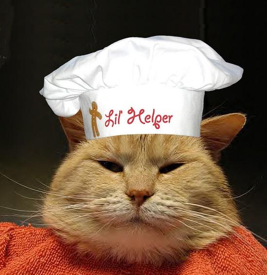 Mama's Lil' Helper iz supervisin' your cooking