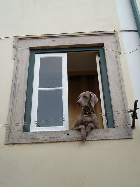 """Weim says: """"Just waiting for my mom..."""""""