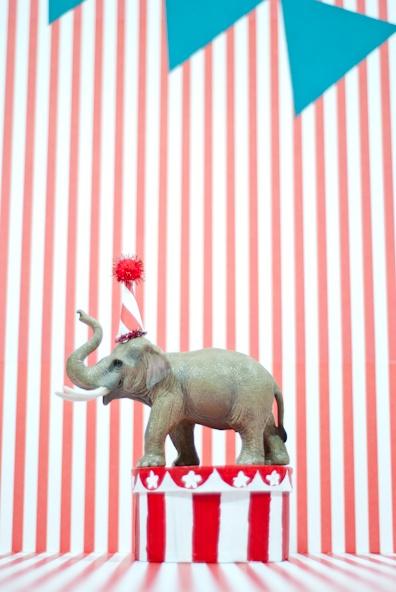 Circus themed birthday - party elephant