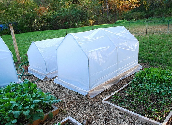 Building mini hoop houses right on a raised garden bed by A Growing Tradition Blog