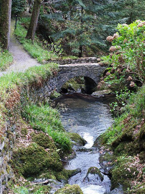 Bodnant Gardens. North Wales.