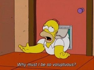 Homer knows what's up.... These hips bump all kinds if things over including small children haha