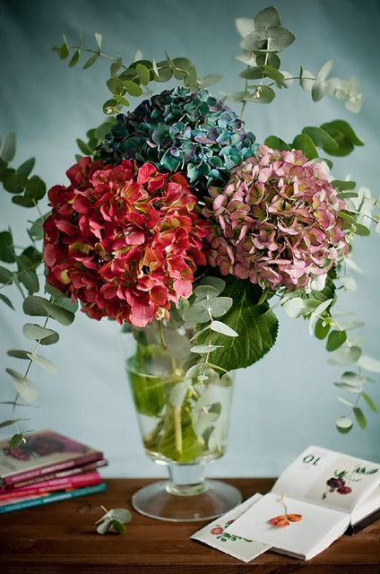 Like something from a vibrant oil painting... #flowers #hydrangeas #beautiful #still_life #blue #pink #red #arrangement