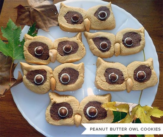 Peanut Butter Owl Cookies - How cute are these!