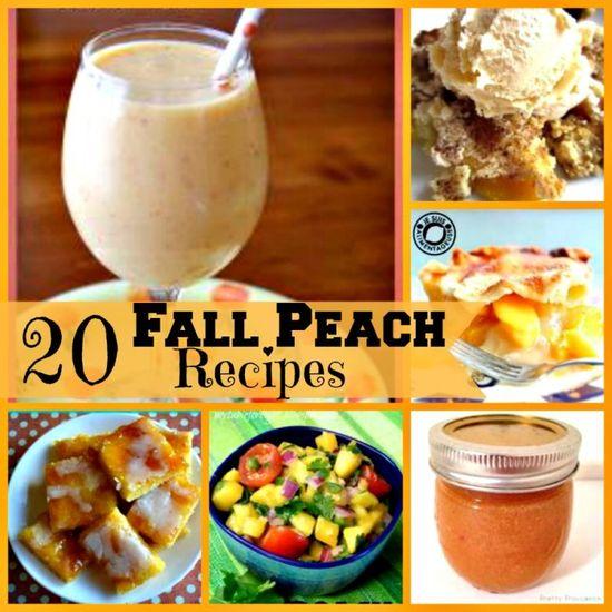 20 Fall Peach Recipes - (Some  great recipes here) - From MyRecipeMagic.com