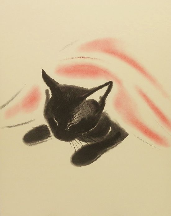 Sweet black cat...