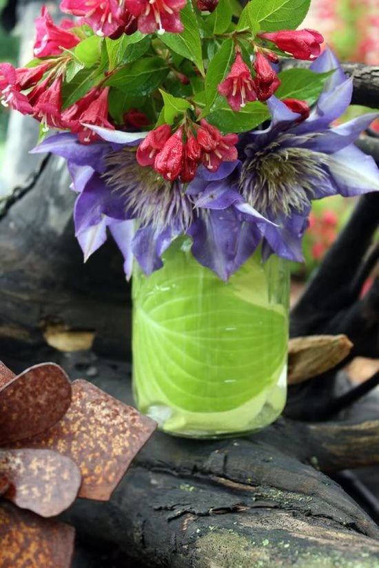 use hostas leaves to line clear vases