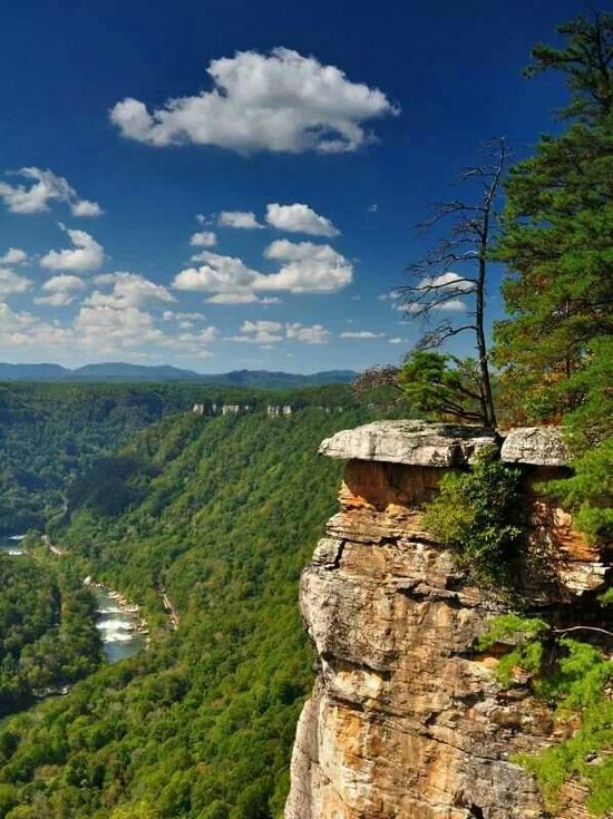 New River Gorge in West Virginia by Ed Rehbein