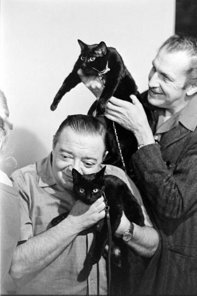 Vincent Price and Peter Lorre with some feline friends.