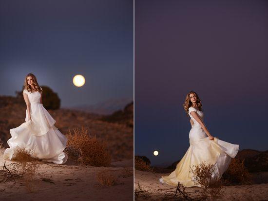 Wedding photos in the desert