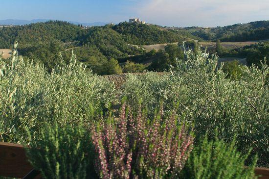 Scenic Views - Italy