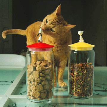 Playful, Practical Pet Bowls & Containers - so fun!!!
