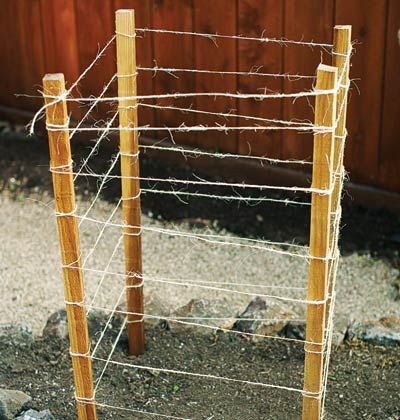 Grow Tomatoes in Cages    Our easy homemade cages have an organic look. Set four 6-foot-long 2 x 2 redwood stakes 1 foot into the ground to form a 20- x 2-inch square; plant seedling in the center. As the plant grows, tie sisal twine around stakes every 6 inches.