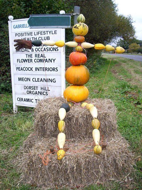 14 creative scarecrows