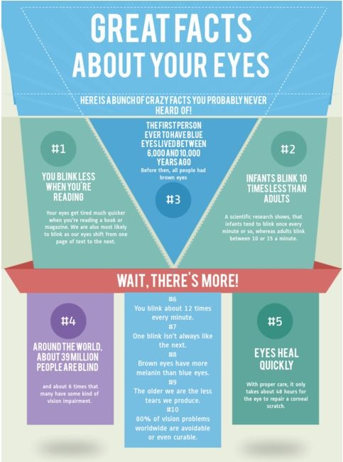 Learn about your #eyes!  #facts #natural #nutrition #organic #health #onebodelive