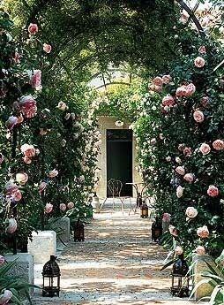 Arbor in France - Pierre de Ronsard Roses