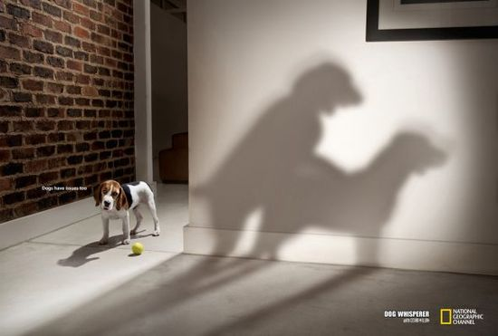 National Geographic Ads