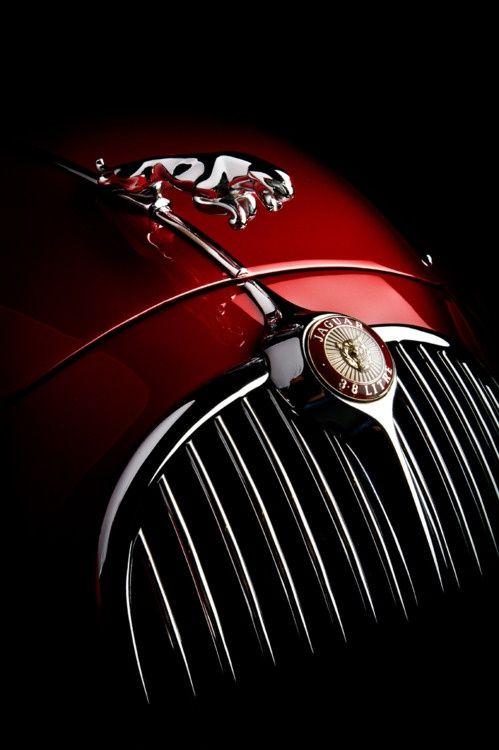 Jaguar classic-car. Mine has to be that color with cream leather interior