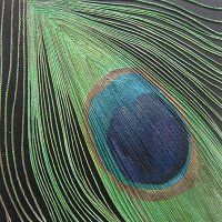peacock feather string work decorative art