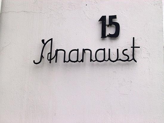 Ananaust