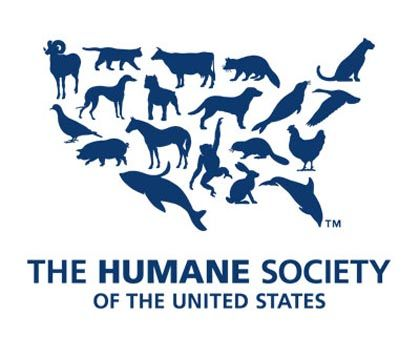 Sign the Humane Society petition to fight against gestation crates!