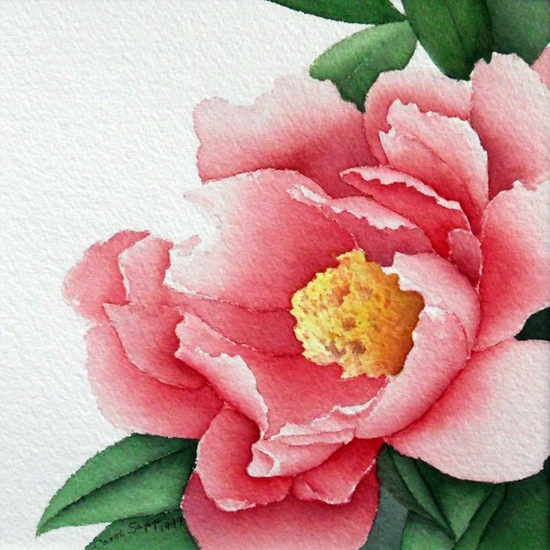 "rose peony watercolor flower painting 8' x 8"" archival print. $18.00, via Etsy."