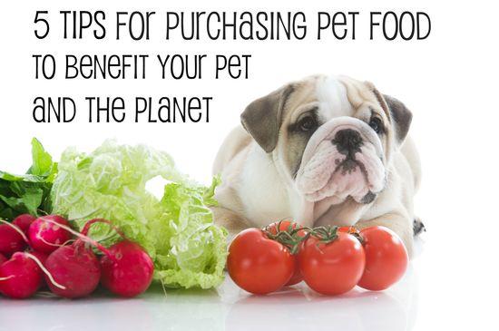 5 tips for purchasing pet food to benefit your pet and the planet from veterinarian @Michael Dussert Dussert Dussert Erdmann Ward
