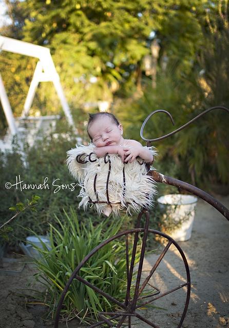 Outdoor newborn Pictures.