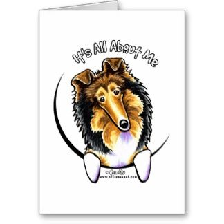 Collie Sheltie IAAM Greeting Cards