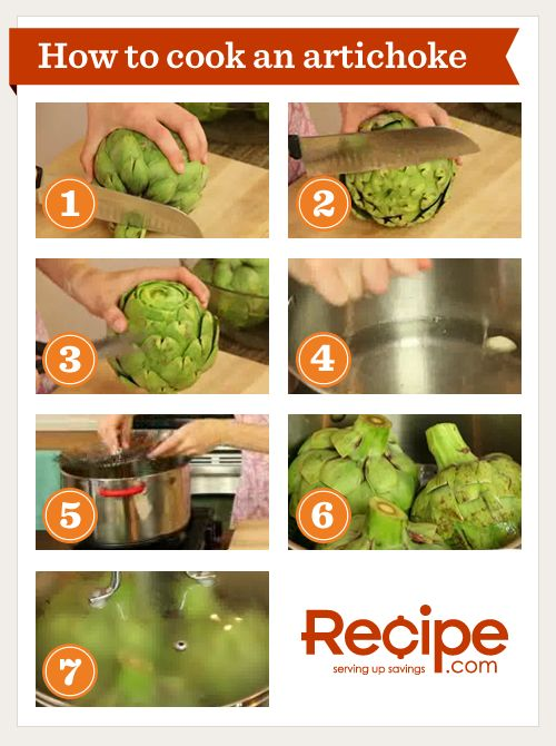How to Cook an Artichoke