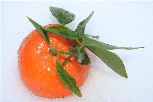 Fresh fruit -