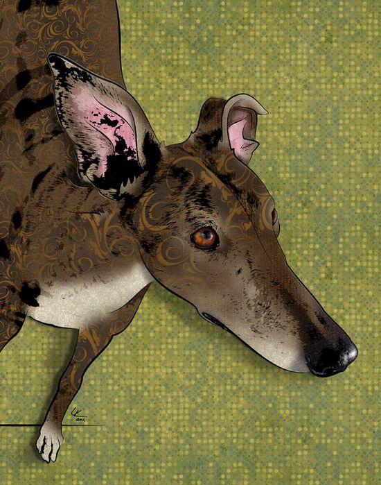 "Brindle, 11x14"" Greyhound Pop Art Print, Dog Art.  PopDogDesigns"