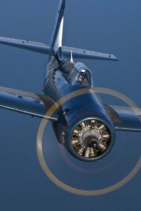 Grumman-FM-2-Wildcat-Plane.jpg