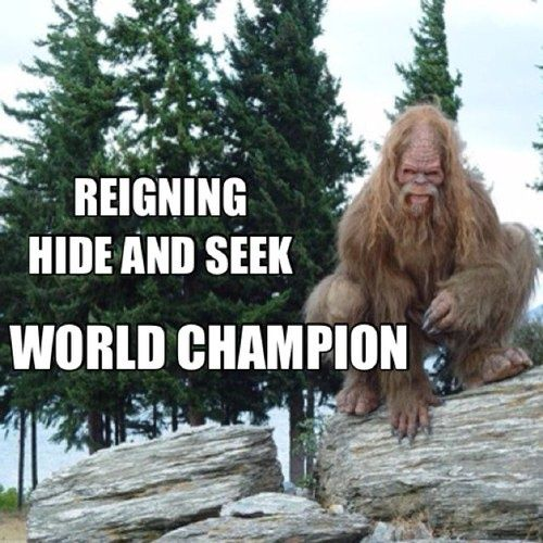 REIGNING HIDE AND SEEK WORLD CHAMPION