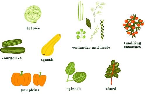 #healthy food
