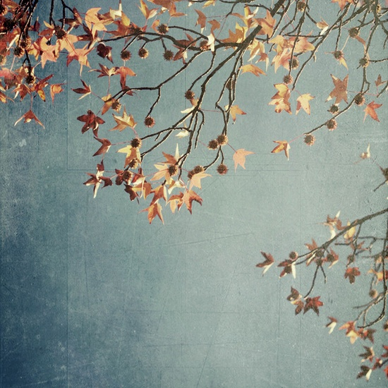 #Autumn.