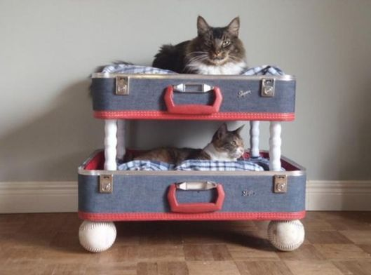 More cute pet beds
