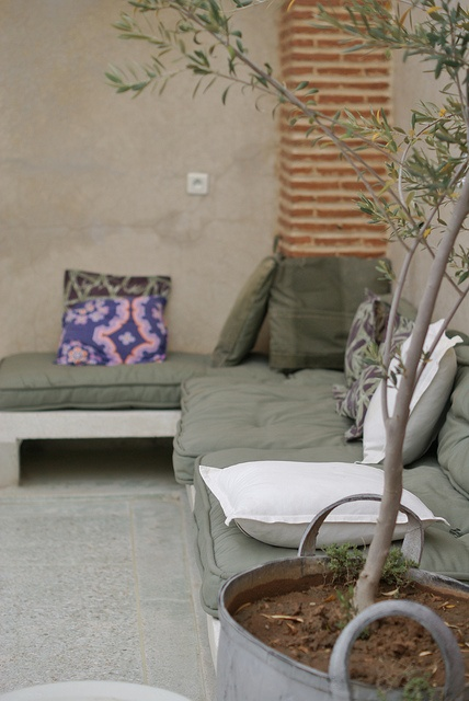 decorative olive in a tin pot. love the built sofa with pillows. roof garden, via Flickr.