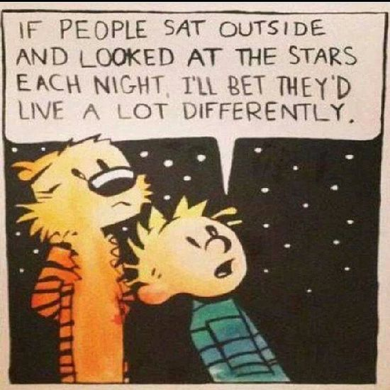 Calvin and Hobbes - Looking at the Stars.