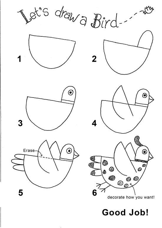 draw bird