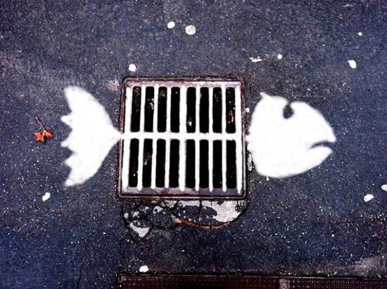 Street art graffiti fish