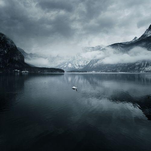 \\ solitude