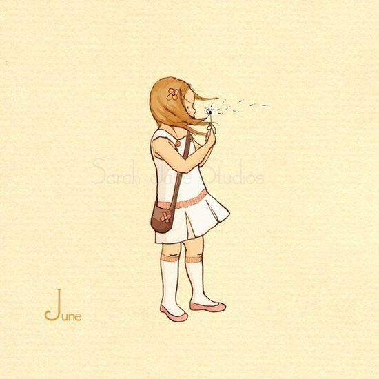 Junes White Dandelion by Sarah Jane Studio