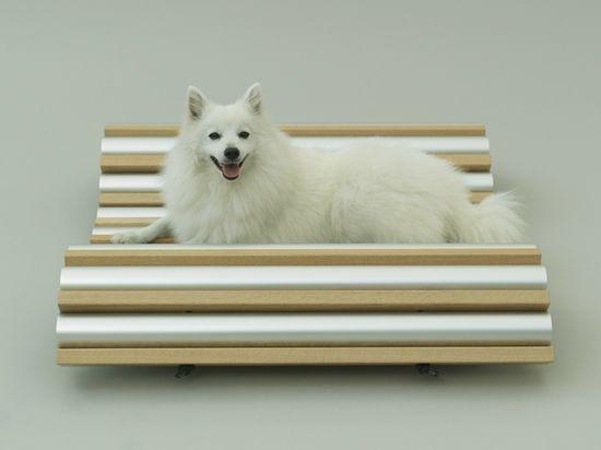 Dog furniture ideas