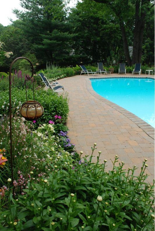 Naturalistic Poolscape - Home and Garden Design Idea's