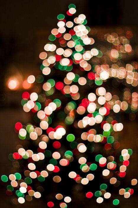 tree lighting.