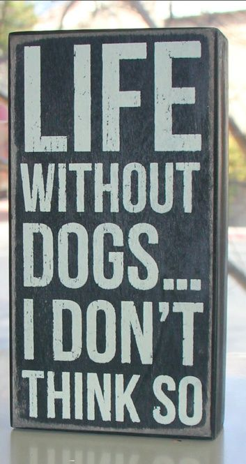 Life without dogs?