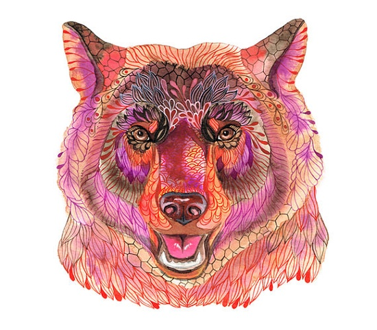 Animal artLimited Edition print  size 10x8 by TevaGallery on Etsy, $17.00