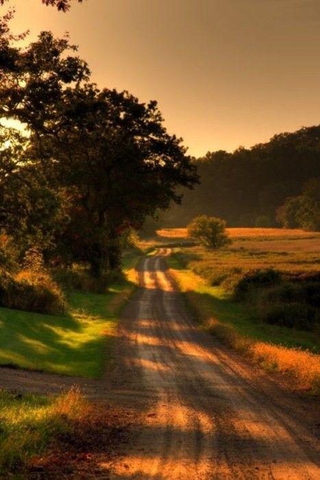 {down the long dirt road}